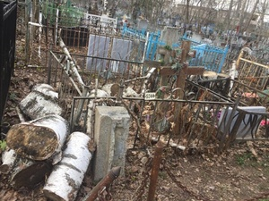 Управление нижегородских кладбищ признало факт захламления ветками могил в «Марьиной роще»