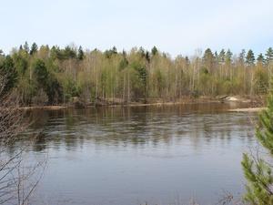 Житель Семенова заплатит за загрязнение реки Керженец