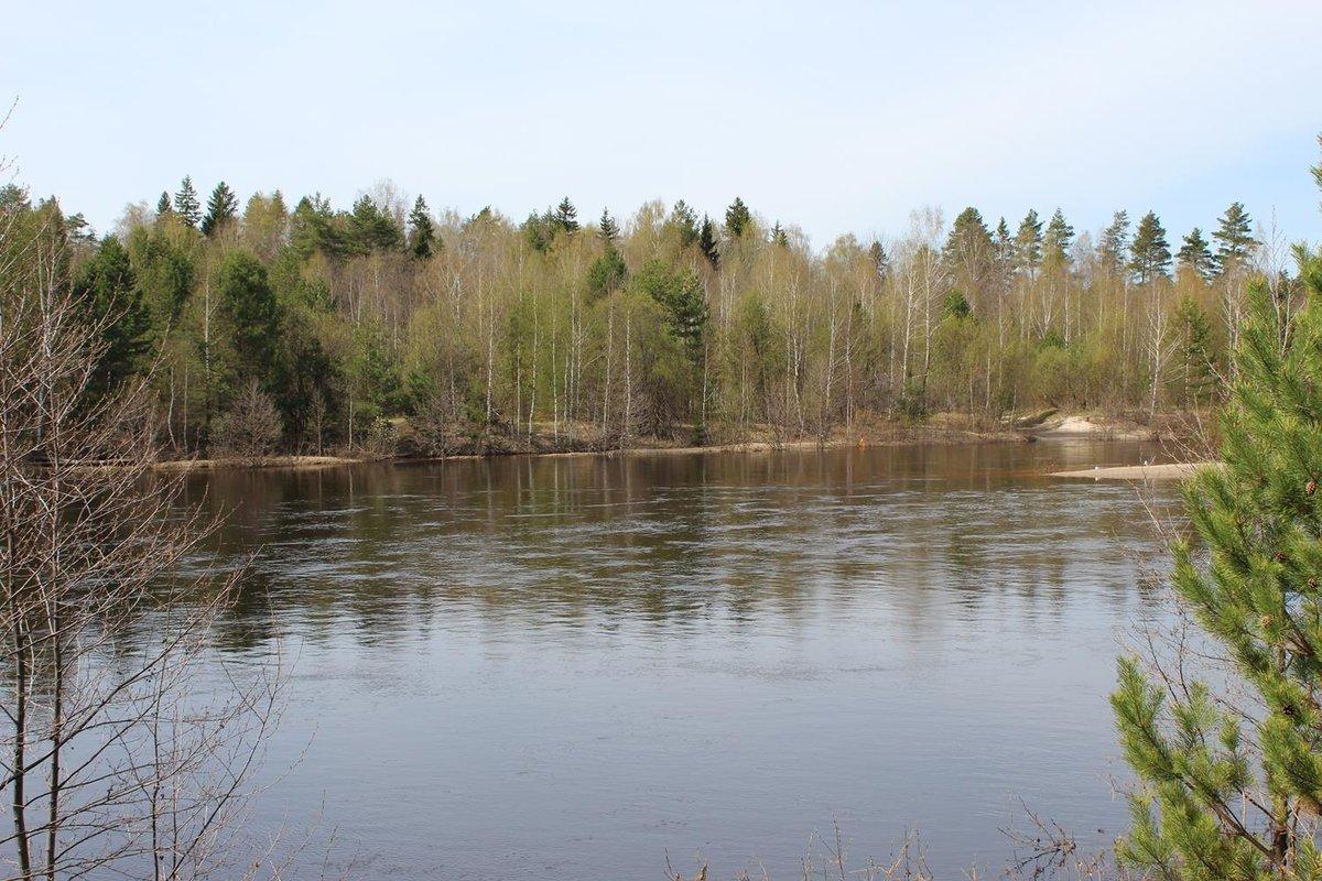 Житель Семенова заплатит за загрязнение реки Керженец - фото 1