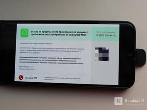 Телефон для подтверждения выхода на улицу во время самоизоляции заработал в Нижегородской области