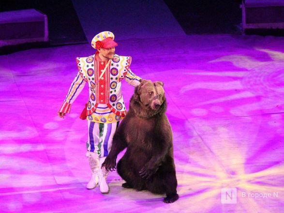 Чудеса «Трансформации» и медвежья кадриль: премьера циркового шоу Гии Эрадзе «БУРЛЕСК» состоялась в Нижнем Новгороде - фото 62