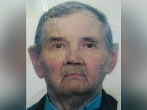 84-летний мужчина на костылях пропал в поселке Новинки