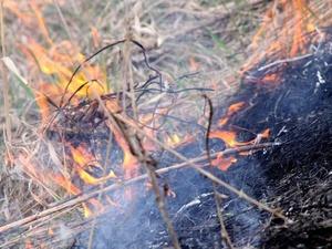 Четвертый класс пожарной опасности сохранится в Нижегородской области до 15 мая