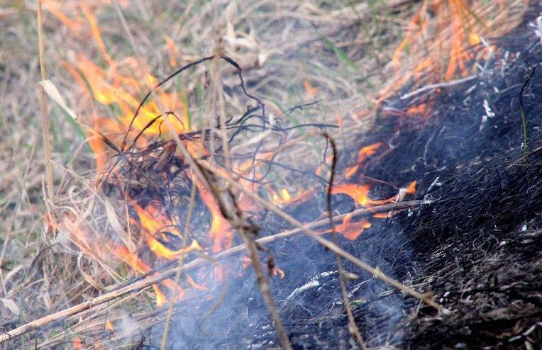 Четвертый класс пожарной опасности сохранится в Нижегородской области до 15 мая - фото 1