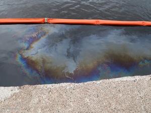 Минэкологии считает необходимым включить Бурнаковскую низину в реестр объектов накопленного экологического ущерба
