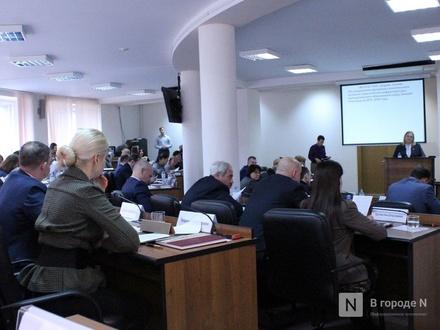 Дума поддержала условия налогообложения для жителей Новинок после присоединения к Нижнему Новгороду