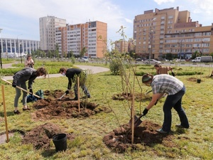 Площадь озеленения кварталов Нижнего Новгорода увеличится в два раза