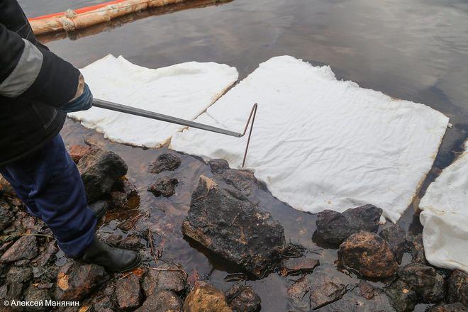 Более полутонны нефтепродуктов собрали с поверхности Волги в районе Бурнаковской низины - фото 3