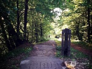 Нижегородцы могут гулять в парках и скверах с 12 июня