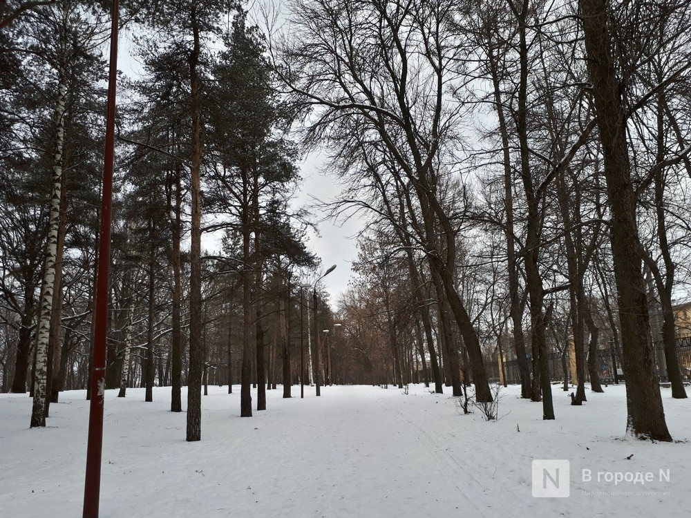 Десять туалетов поставят в нижегородском парке «Швейцария» - фото 1