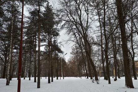 Десять туалетов поставят в нижегородском парке «Швейцария»