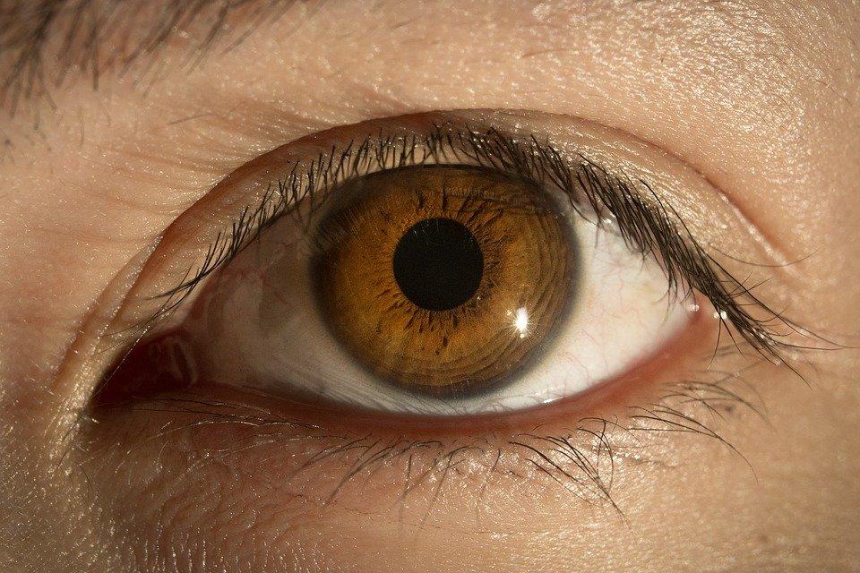 спектр глаз фото время, когда хочется
