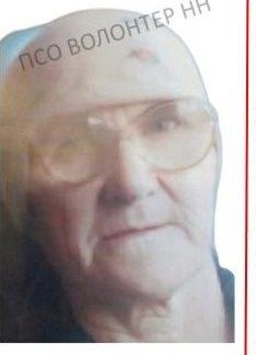 Пожилая женщина пропала без вести в Вачском районе - фото 1