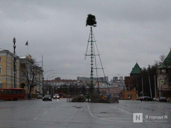Главную городскую елку начали устанавливать на площади Минина и Пожарского - фото 3