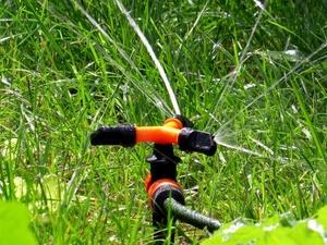 В Нижегородском кремле смонтируют автоматическую систему полива за 3 млн рублей