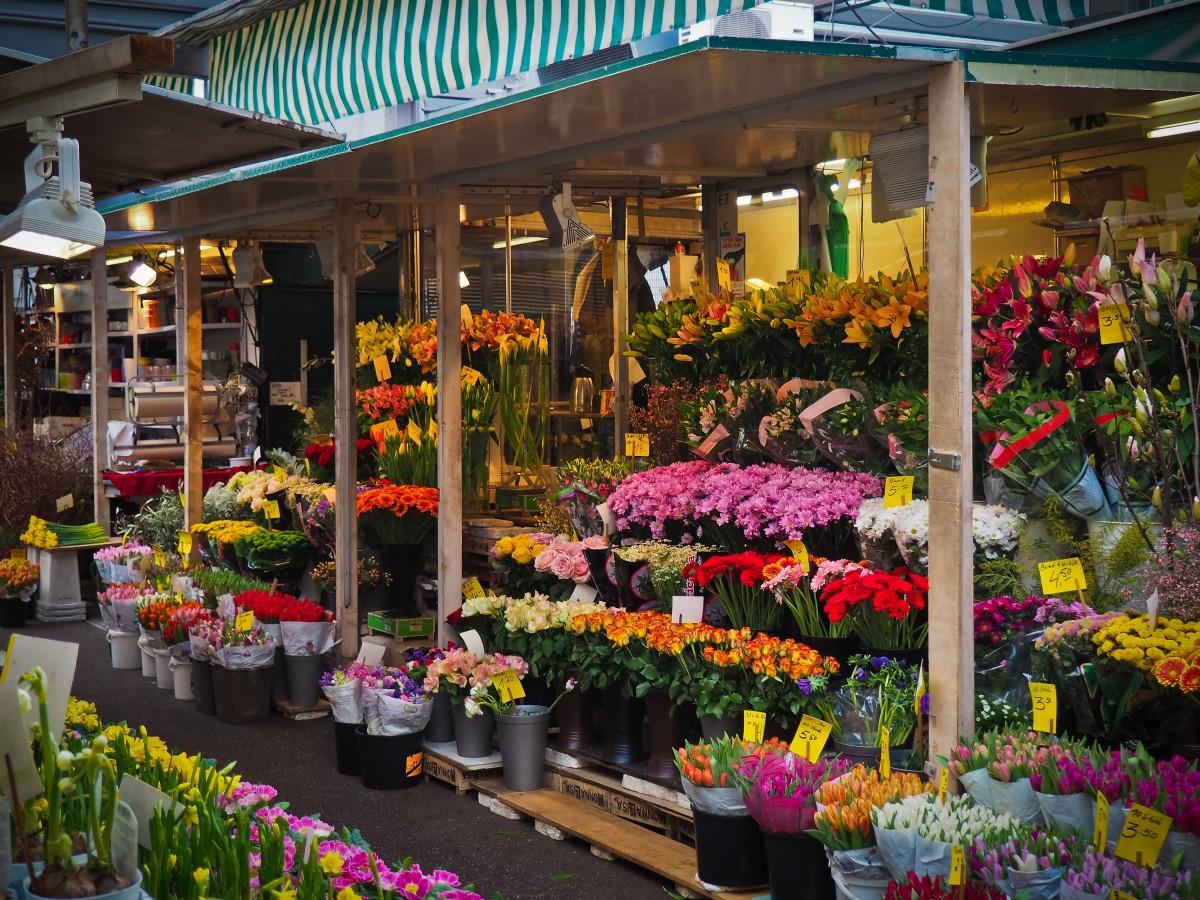 Оптовая магазины по продажа цветов в нижнем новгороде