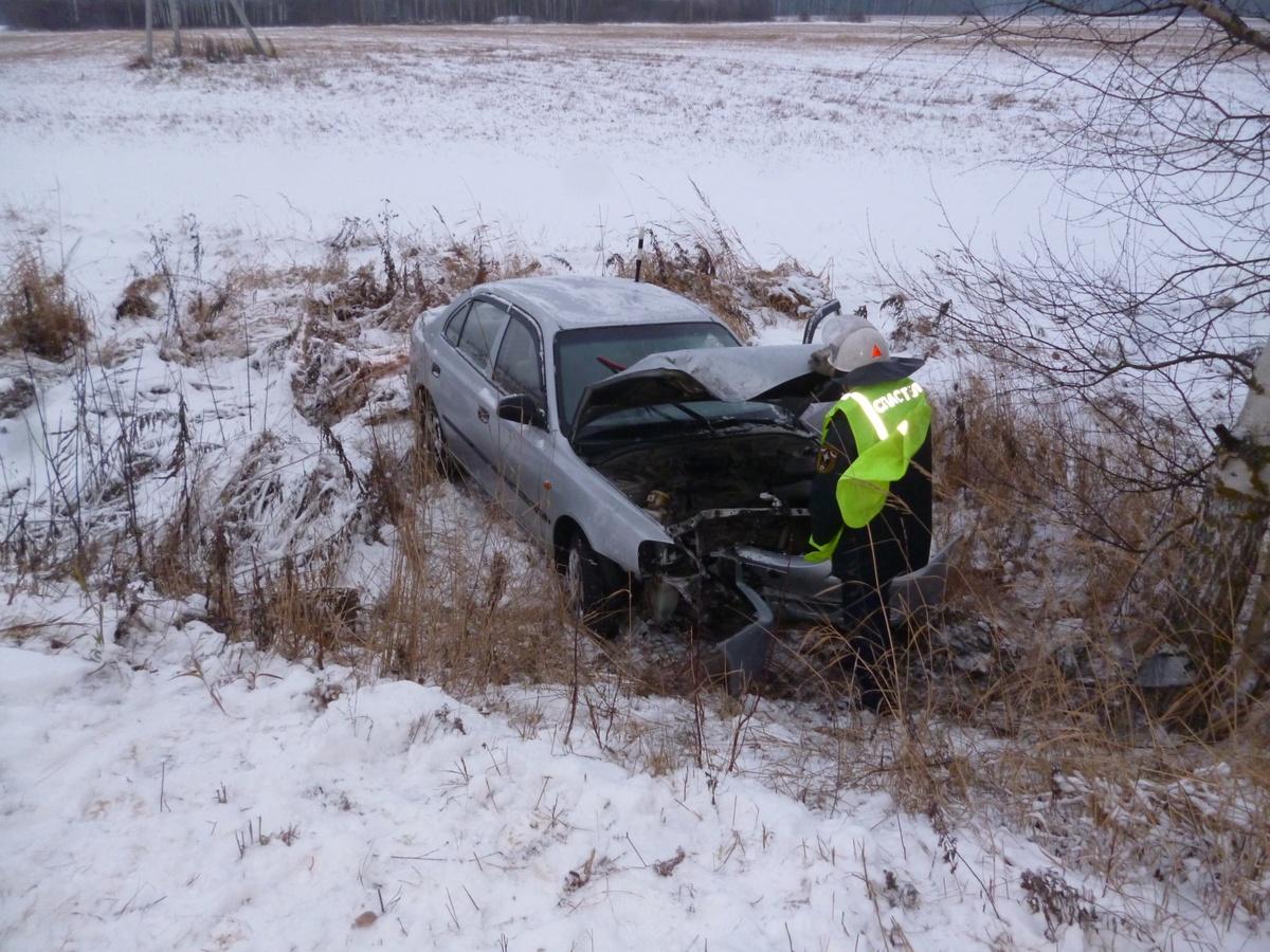 Смертельная авария произошла в Городецком районе - фото 1