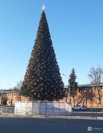 Главную городскую елку нарядили в Нижнем Новгороде - фото 6