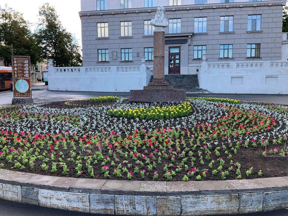 Цветов-розы, цветы нижний новгород нижегородская обл
