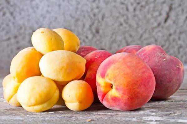 Больше тысячи тонн опасных фруктов не пустили в Нижегородскую область - фото 1