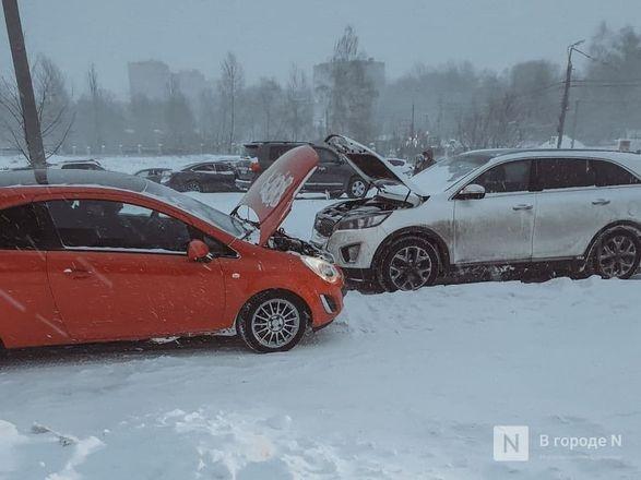 Как Нижний Новгород пережил аномально морозные дни  - фото 7