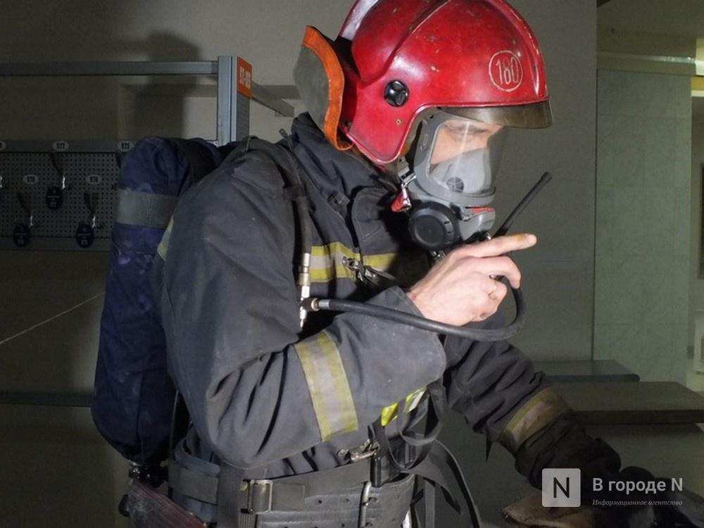Человек погиб при пожаре в частном доме в Семеновском районе - фото 1