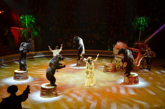 Шоу Гии Эрадзе «5 КОНТИНЕНТОВ» — праздник, который захочется увидеть снова - фото 12