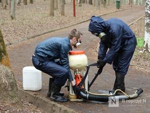 Клещи не пройдут: более 940 га в Нижнем Новгороде обработают от паразитов